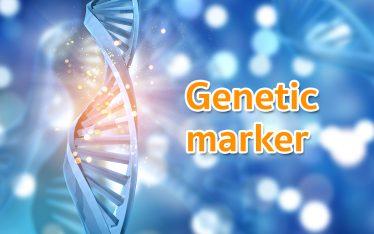 genetic maker
